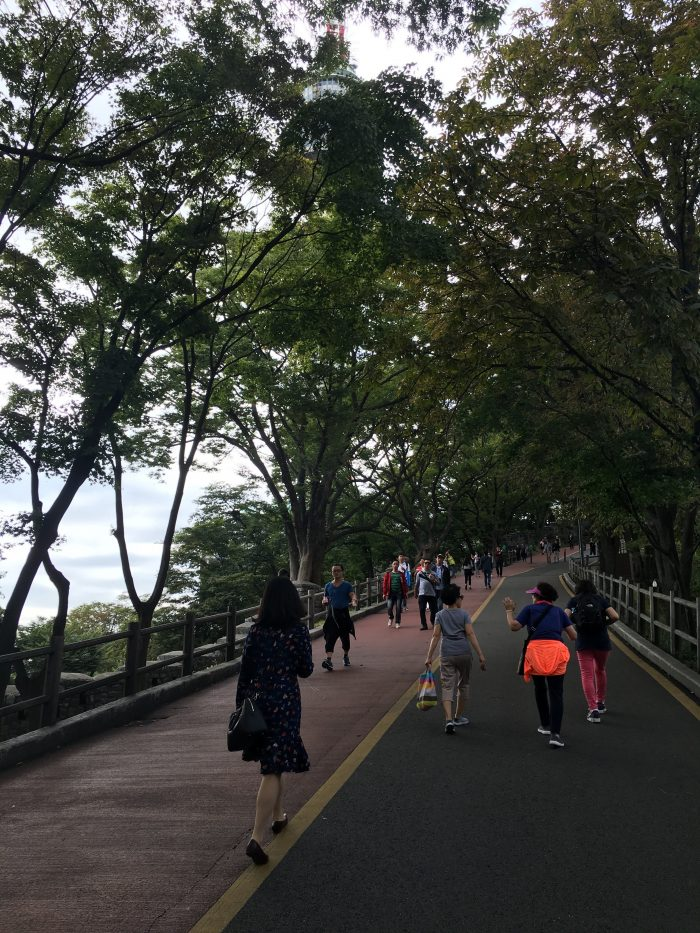 namsan mountain trail road 700x933 - Walking the Seoul City Wall - Namsan (Mongmyeok) Mountain Trail section
