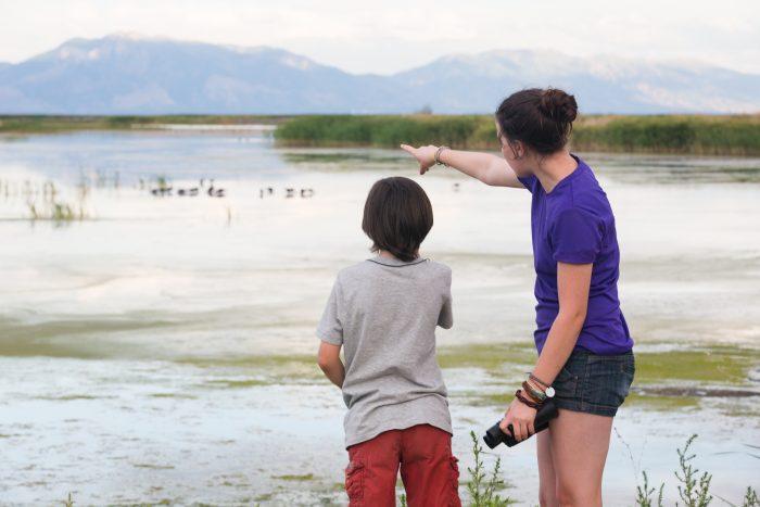 birdwatching bear river bird refuge 700x467 - Historic & natural journeys in Box Elder County, Utah
