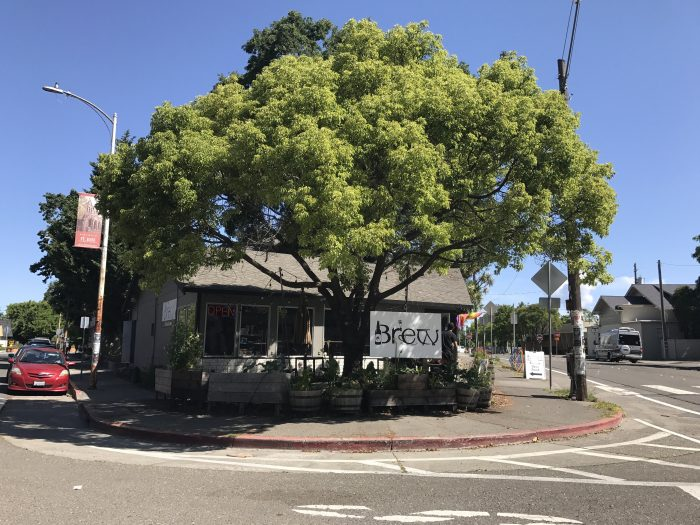 brew coffee beer santa rosa 700x525 - The best craft beer in Santa Rosa, California