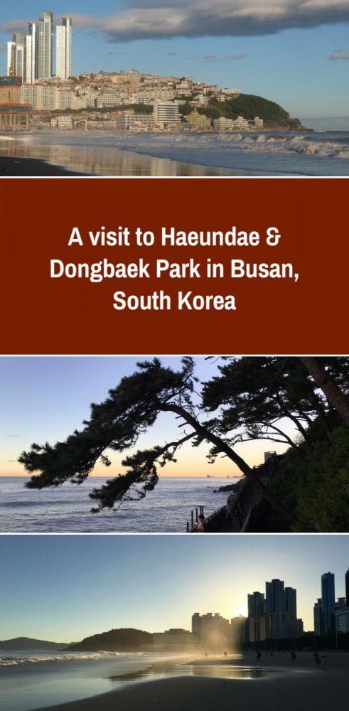 haeundae dongbaek park busan south korea 491x1000 - A visit to Haeundae & Dongbaek Park in Busan, South Korea