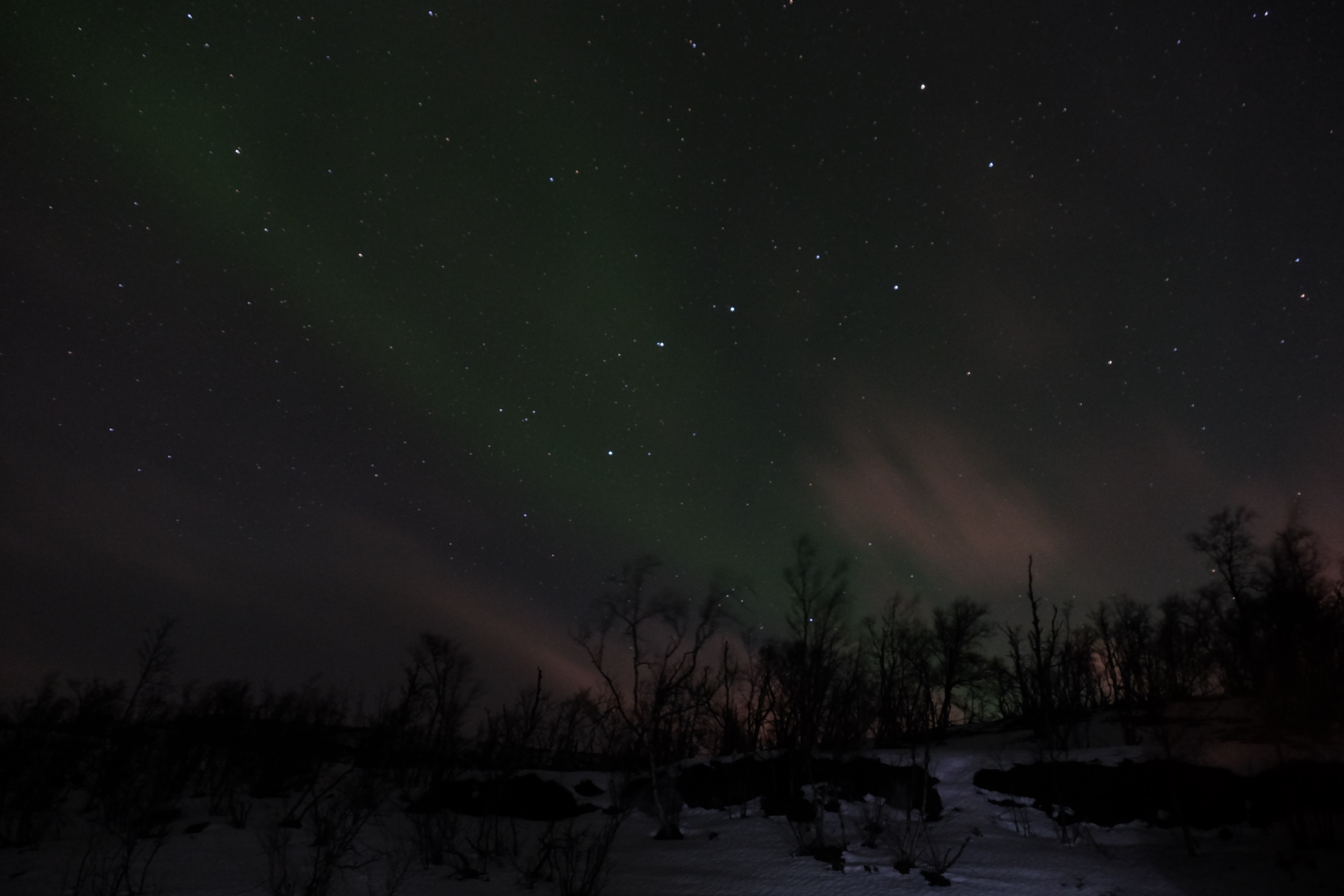 Chasing The Northern Lights In Troms 248 Norway