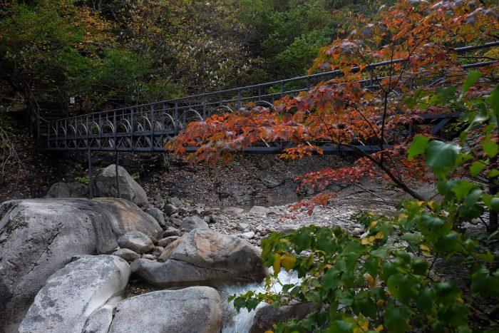 seoraksan national park autumn leaves 700x467 - Hiking in Seoraksan National Park - Biseondae