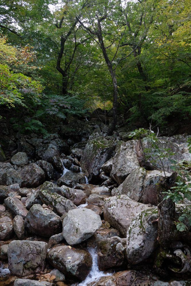 seoraksan national park hiking trails trees rivers autumn 667x1000 - Hiking in Seoraksan National Park - Biseondae