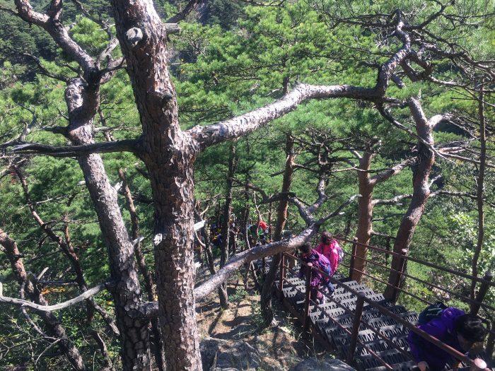 towangseong falls staircase 700x525 - Hiking in Seoraksan National Park - Biryong, Yukdam, & Towangseong Falls