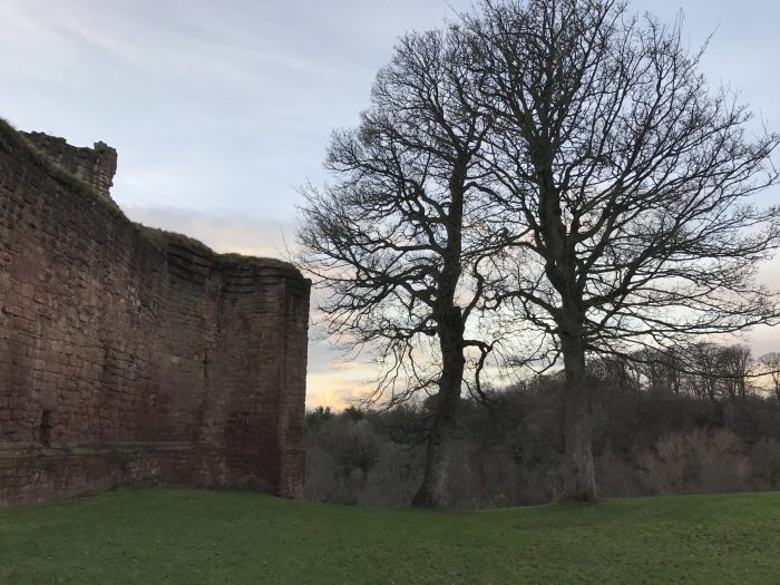 bothwell castle tree 700x525 - A day trip from Glasgow to Bothwell Castle