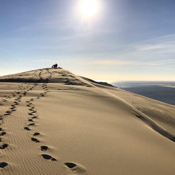dune du pilat 700x700 - A day trip from Bordeaux to Dune du Pilat & Arcachon