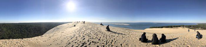 dune du pilat forest ocean 700x162 - A day trip from Bordeaux to Dune du Pilat & Arcachon