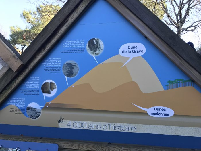 dune du pilat geology history 700x525 - A day trip from Bordeaux to Dune du Pilat & Arcachon