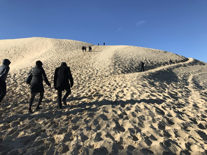 dune du pilat path 700x525 - A day trip from Bordeaux to Dune du Pilat & Arcachon