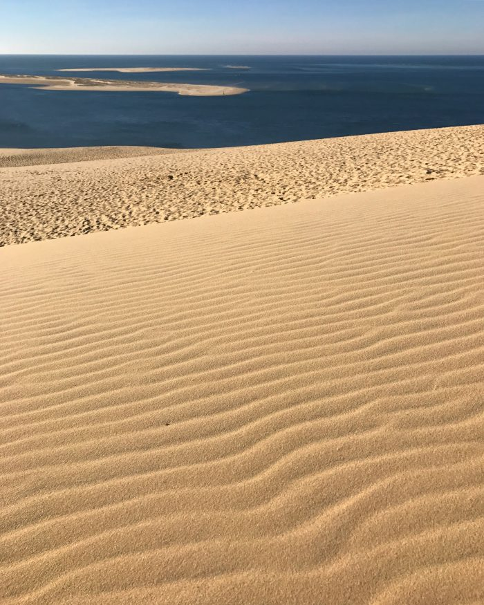 dune du pilat sand 700x875 - A day trip from Bordeaux to Dune du Pilat & Arcachon