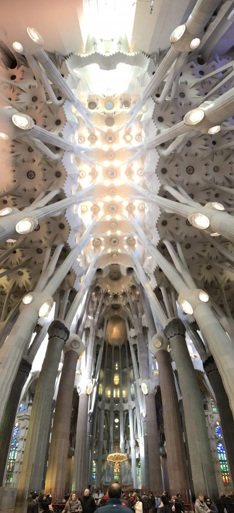 sagrada familia barcelona interior ceiling 457x1000 - A visit to the Sagrada Familia in Barcelona, Spain