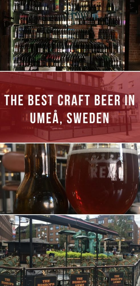 the best craft beer in umea sweden 491x1000 - The best craft beer in Umeå, Sweden