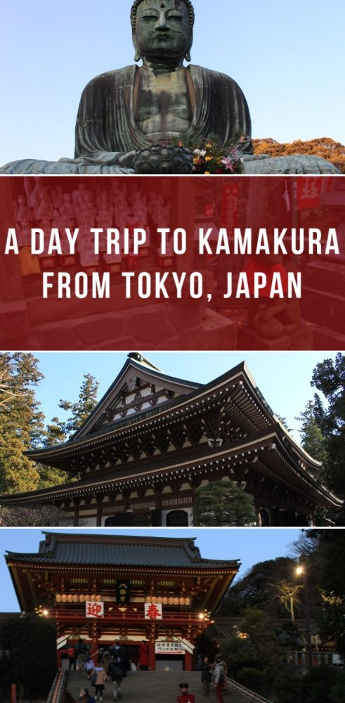 a day trip to kamakura from tokyo japan 491x1000 - A day trip to Kamakura from Tokyo, Japan