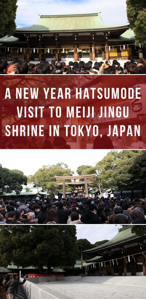 a new year hatsumode visit to meiji jingu shrine in tokyo japan 491x1000 - A New Year Hatsumode visit to Meiji Jingu shrine in Tokyo, Japan