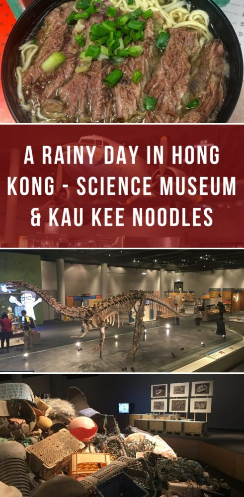 a rainy day in hong kong science museum kau kee noodles 491x1000 - A rainy day in Hong Kong - Science Museum & Kau Kee noodles