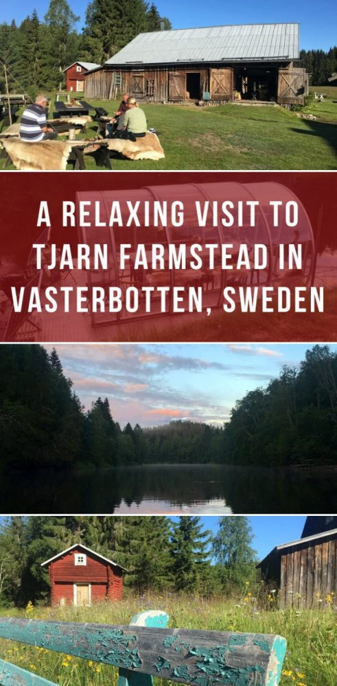 a relaxing visit to tjarn farmstead in vasterbotten sweden 491x1000 - A relaxing visit to Tjarn farmstead in Vasterbotten, Sweden