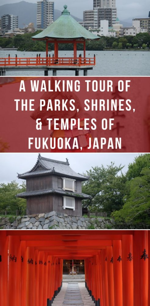 a walking tour of the parks shrines temples of fukuoka japan 491x1000 - A walking tour of the parks, shrines, & temples of Fukuoka, Japan