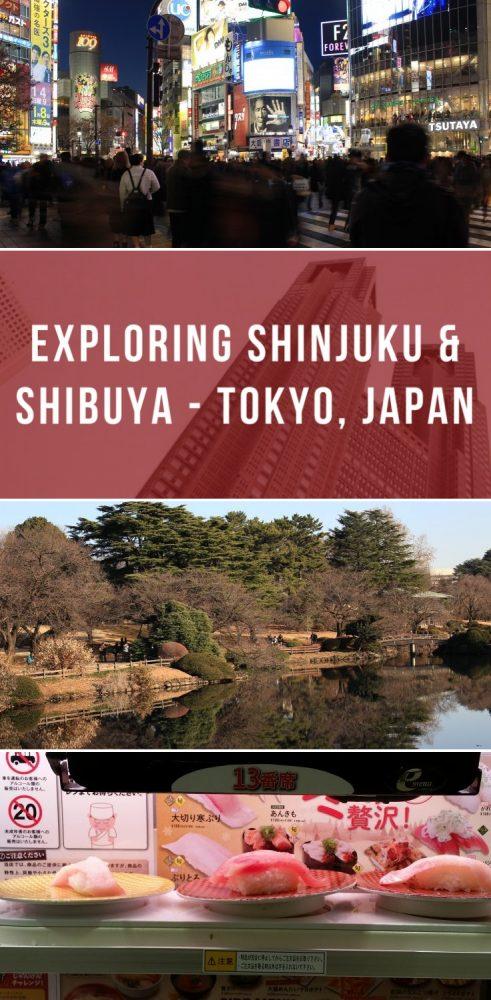 exploring shinjuku shibuya tokyo japan 491x1000 - Exploring Shinjuku & Shibuya - Tokyo, Japan