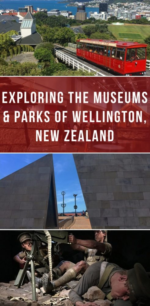 exploring the museums parks of wellington new zealand 491x1000 - Exploring the museums & parks of Wellington, New Zealand