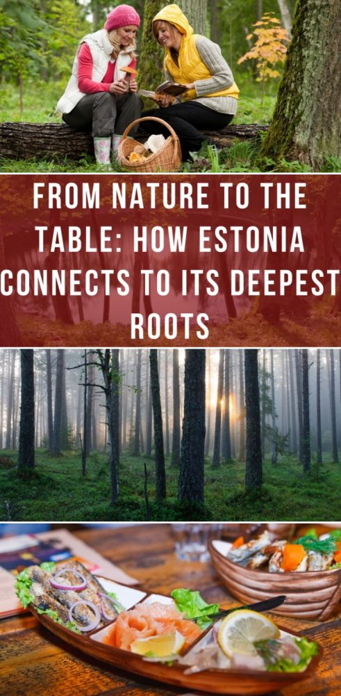 from nature to the table how estonia connects to its deepest roots 491x1000 - From nature to the table: How Estonia connects to its Deepest Roots