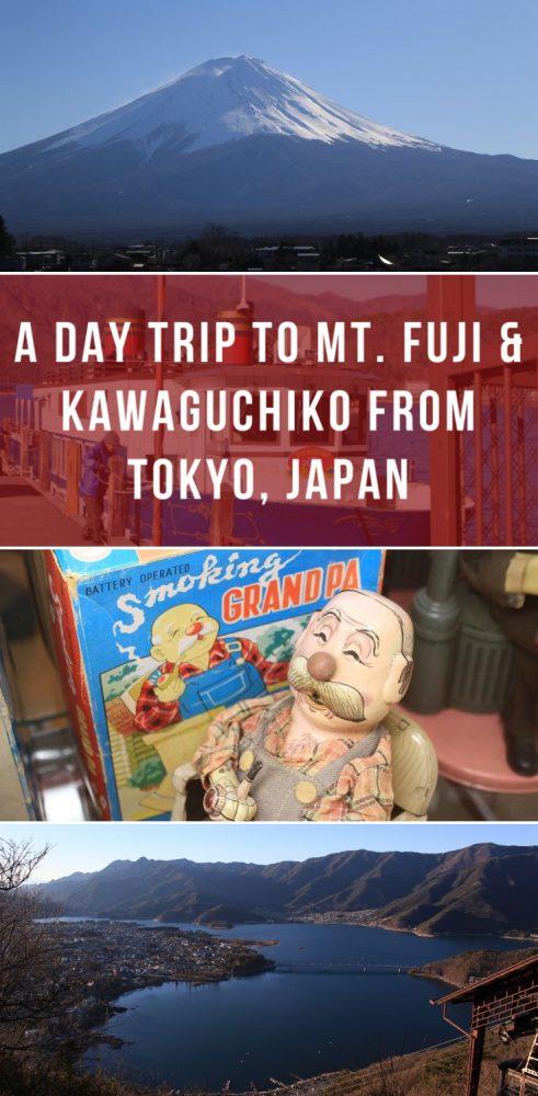 grid canvas 2591 491x1000 - A day trip to Mt. Fuji & Kawaguchiko from Tokyo, Japan