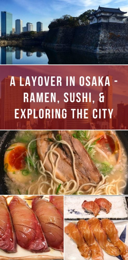 grid canvas 7455 491x1000 - A layover in Osaka - Ramen, sushi, & exploring the city