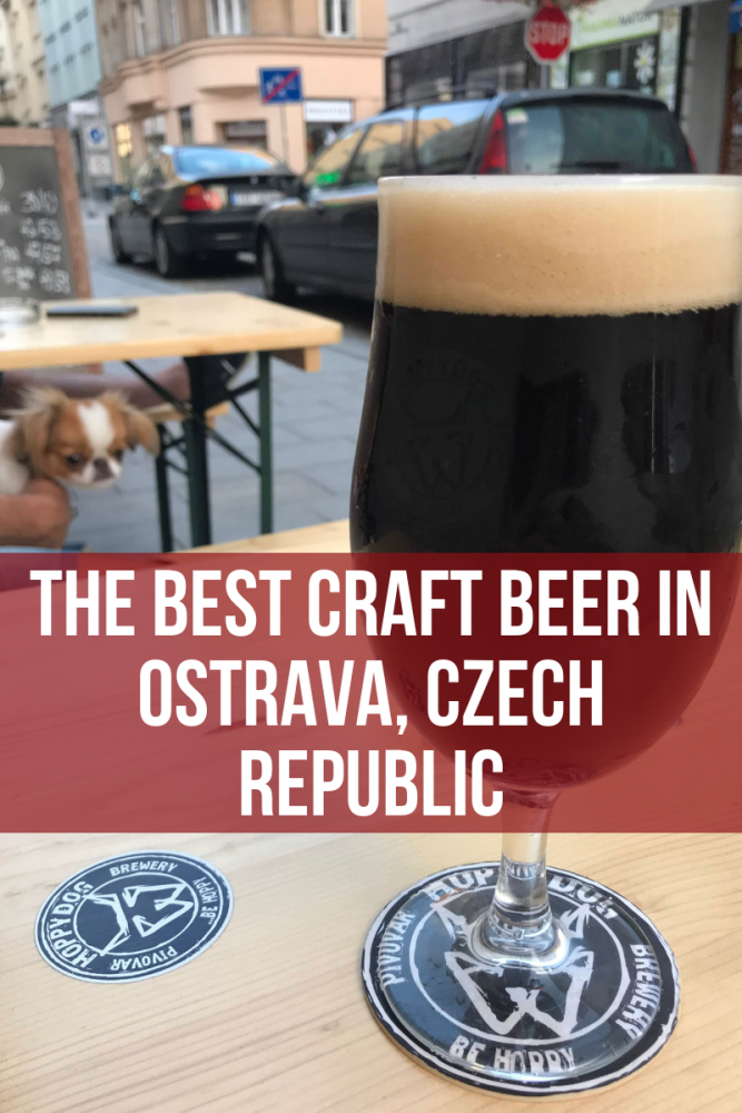 the best craft beer in ostrava czech republic 667x1000 - The best craft beer in Ostrava, Czech Republic