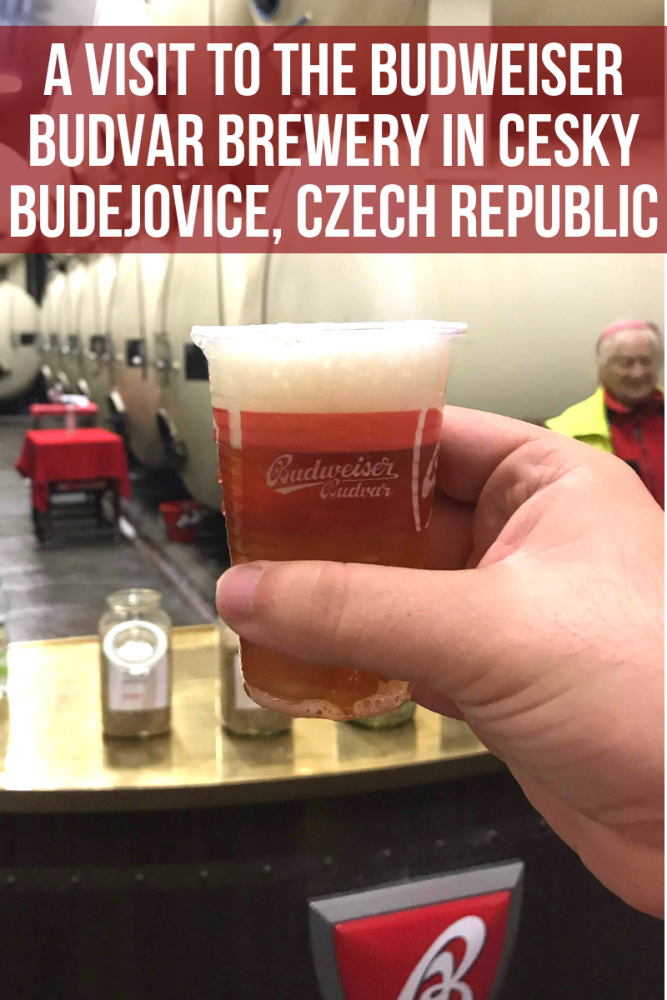 a visit to the budweiser budvar brewery in cesky budejovice czech republic 667x1000 - A visit to the Budweiser Budvar brewery in Cesky Budejovice, Czech Republic