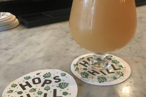 hops hill 300x200 - The best craft beer in Clinton Hill, Brooklyn, New York