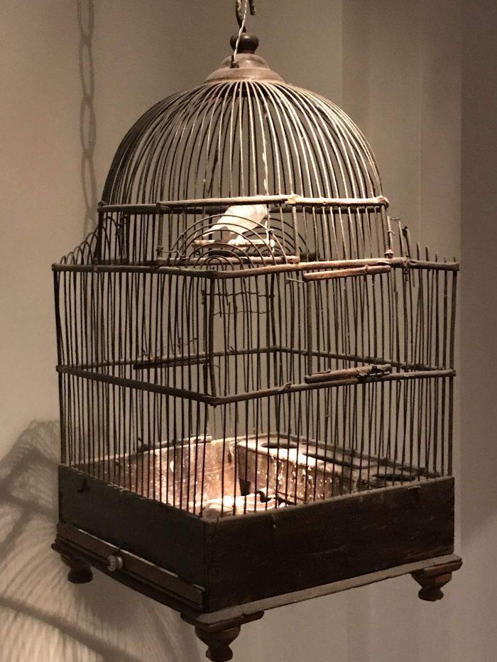 museum of innocence istanbul lemon birdcage 700x933 - A visit to the Museum of Innocence in Istanbul, Turkey