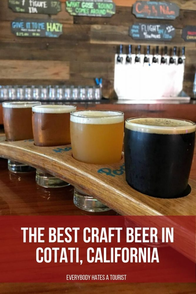 the best craft beer in cotati california 667x1000 - The best craft beer in Cotati, California