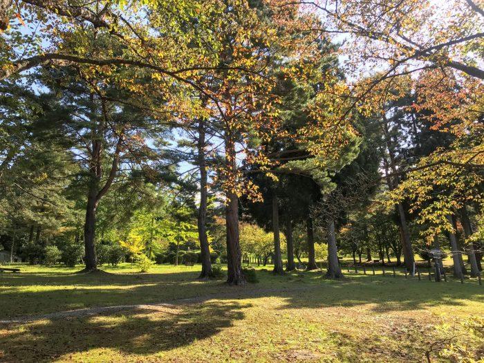 citizens forest lake tazawa 700x525 - A day trip from Morioka to Lake Tazawa, Japan
