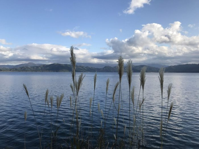 day trip to lake tazawa 700x525 - A day trip from Morioka to Lake Tazawa, Japan