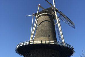 leiden windmill 300x200 - My month so far