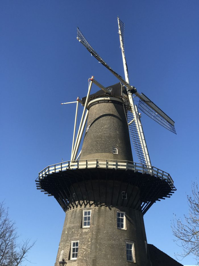 leiden windmill 700x933 - My month so far