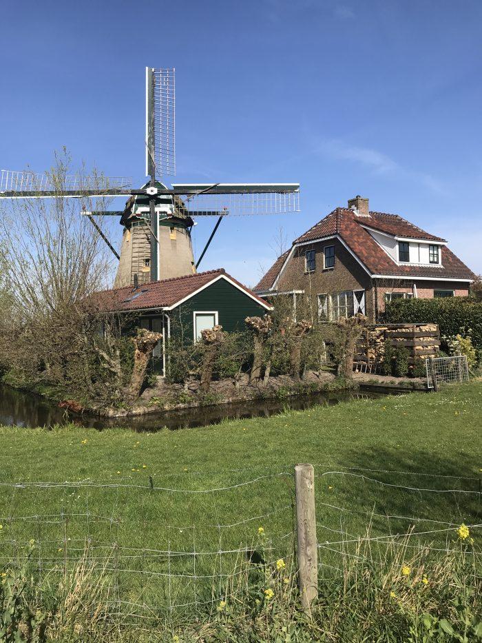 windmill leiden 1 700x933 - My next month so far