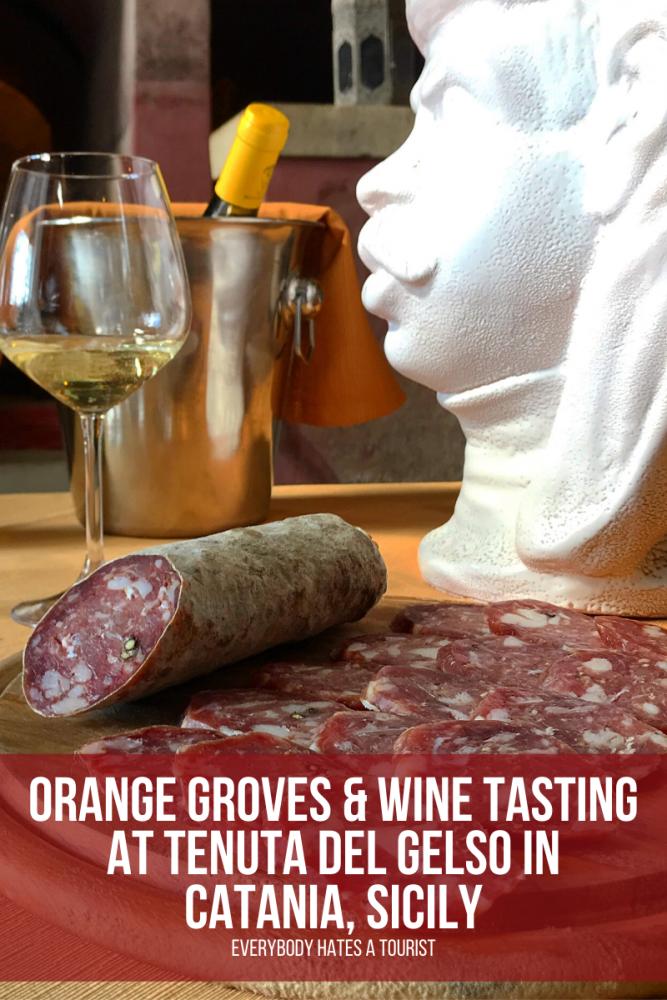 orange groves wine tasting at tenuta del gelso in catania sicily 667x1000 - Orange groves & wine tasting at Tenuta Del Gelso in Catania, Sicily