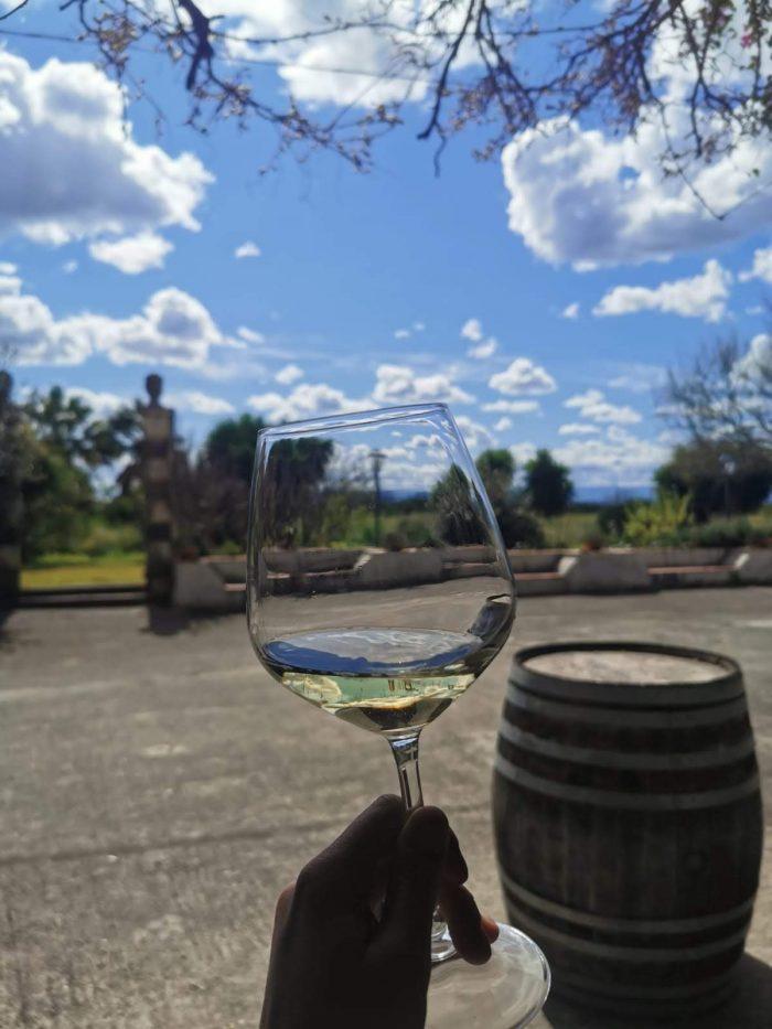 tenuta del gelso wine tasting 700x933 - Orange groves & wine tasting at Tenuta Del Gelso in Catania, Sicily