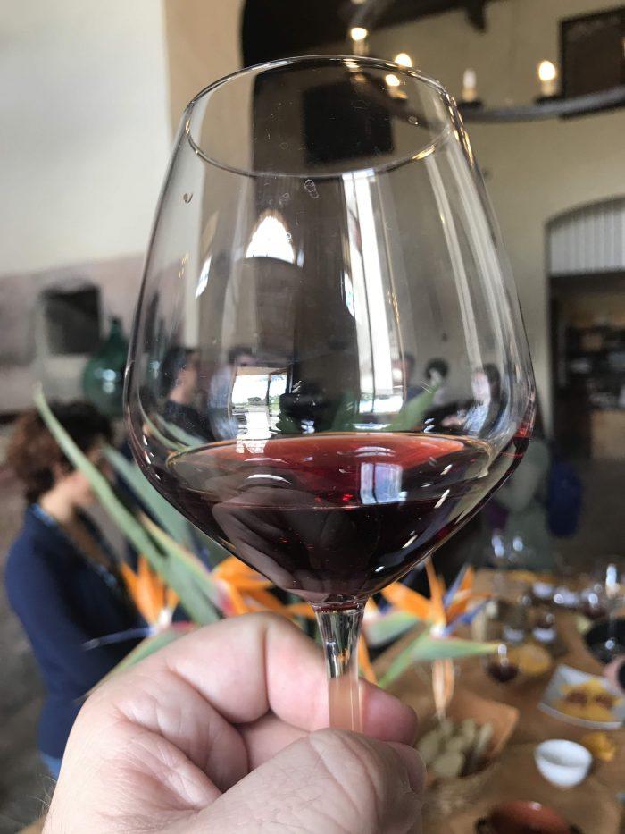 tenute mannino rosso wine 700x933 - Orange groves & wine tasting at Tenuta Del Gelso in Catania, Sicily