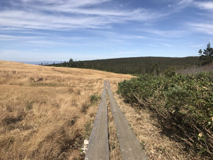 hiking trails hachimantai 700x525 - A day trip from Morioka to Hachimantai National Park, Japan