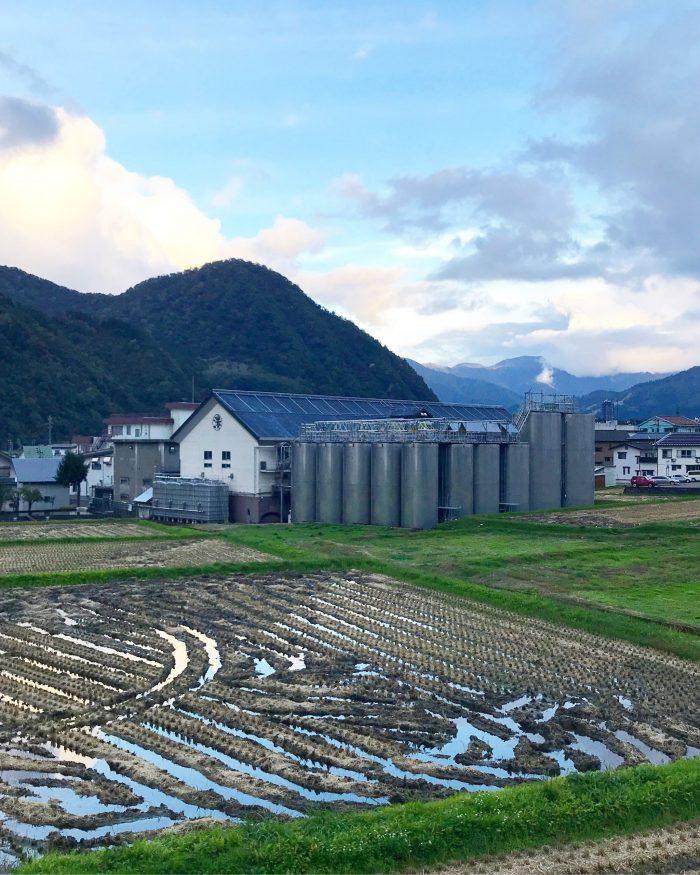 shirataki sake brewery yuzawa 700x875 - The guide to sake in Yuzawa, Japan
