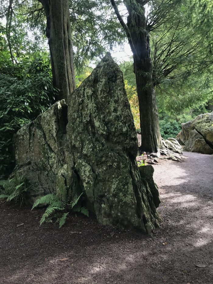 rock close 700x933 - Blarney Castle - Kissing the Blarney Stone for the Gift of Gab, history, gardens, & much more