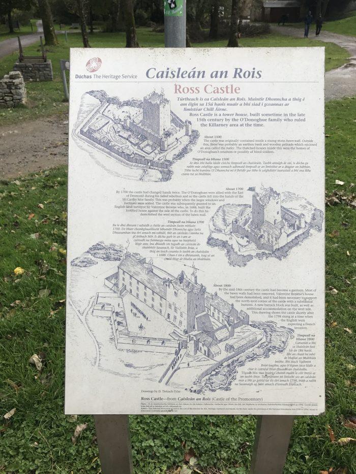 ross castle information history 700x933 - Ross Castle & Ross Island in Killarney, Ireland