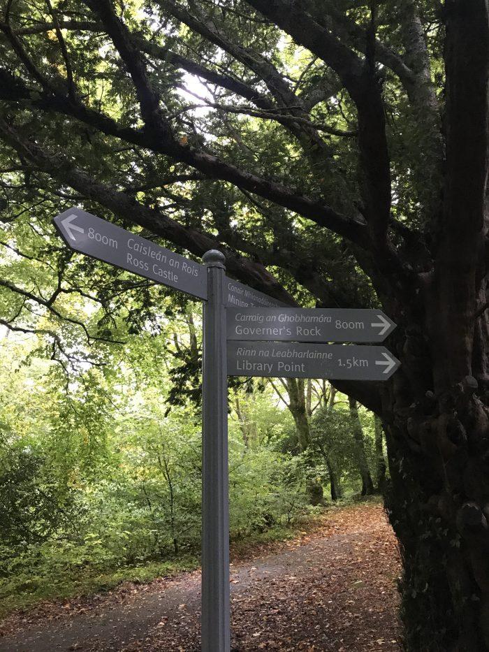 ross island walking paths 700x933 - Ross Castle & Ross Island in Killarney, Ireland