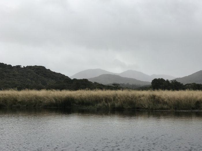 upper lake killarney 700x525 - The Gap of Dunloe & Killarney Lakes - Ireland at its most beautiful
